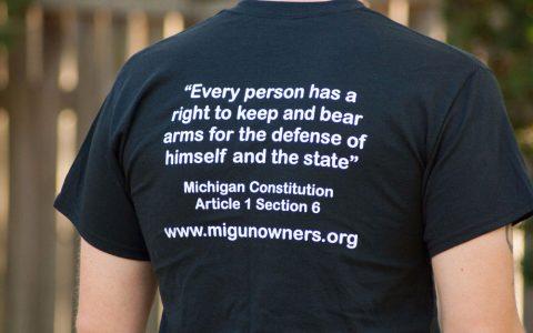 Michigan Constitution